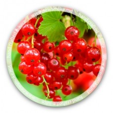 N.S Redcurrant